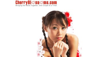 cherry blossoms review
