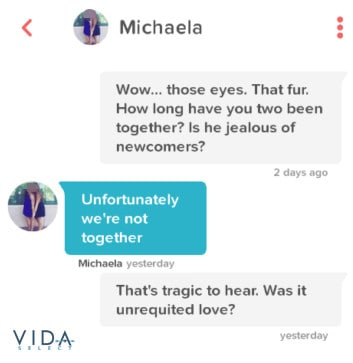 Tinder message asking about pets