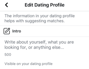 Facebook dating bio