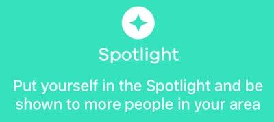 bumble spotlight
