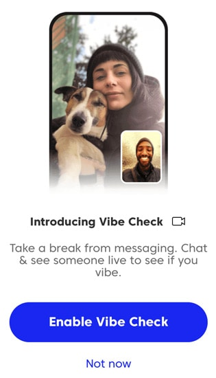 Match Vibe Check feature