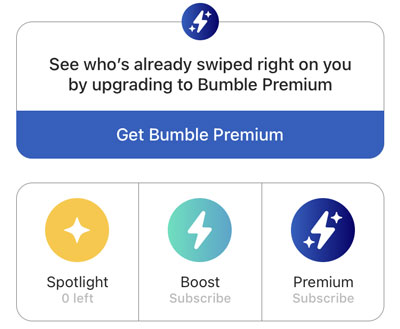 Bumble Upgrade Options