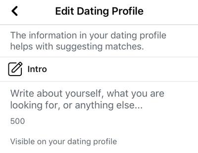 Facebook dating bio set up screen