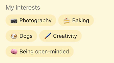Bumble My Interests 5 examples